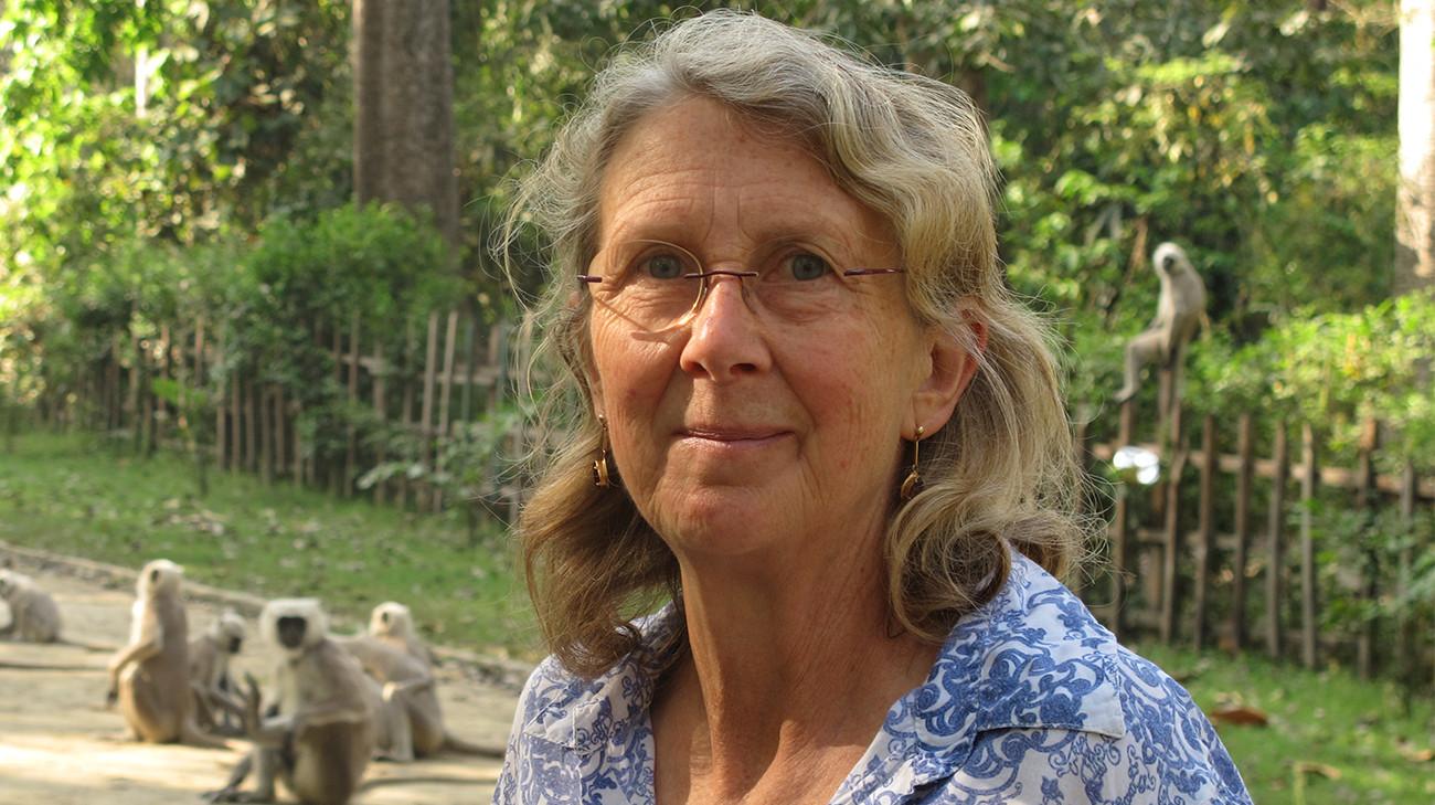Dr Jane Wilson-Howarth