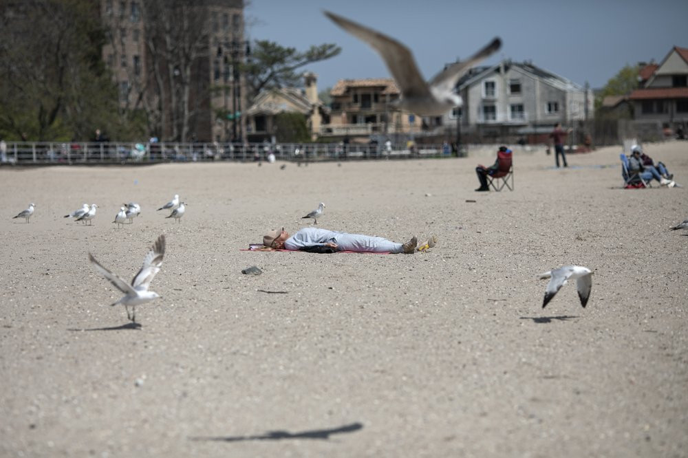 A woman sleeps on Brighton Beach in the Brooklyn borough of New York as seagulls flutter around her, on Saturday, April 25, 2020.