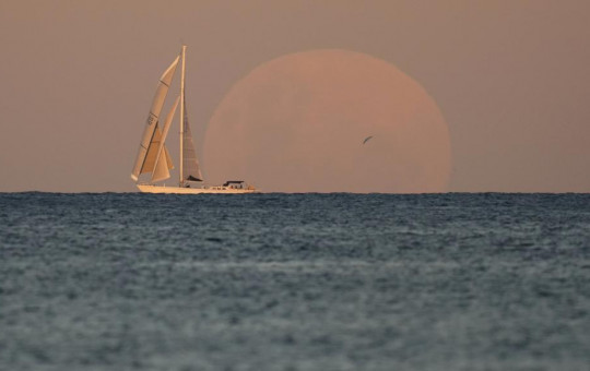 A yacht sails past as the moon rises in Sydney Wednesday, May 26, 2021.